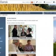 Online Dansk